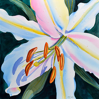watercolor of a colorful white lily flower.