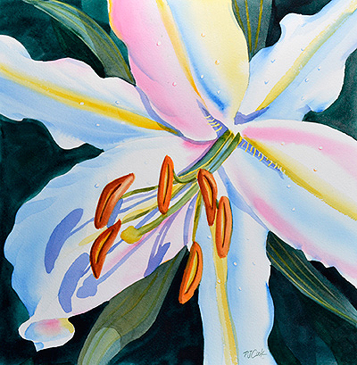 Colorful lily flower pj cook gallery of original fine art watercolor of a colorful white lily flower mightylinksfo Images