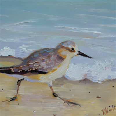 beach bird running on the sand oil painting, sandpipers