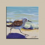 sandpipers beach bird running on the sand oil painting on gessoboard.