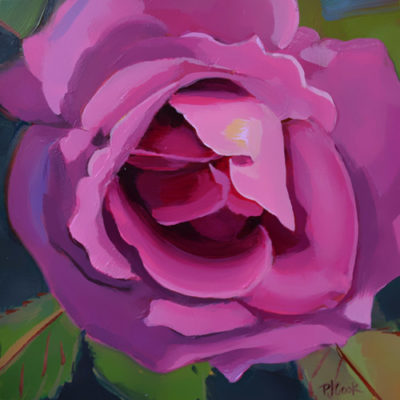 """Luscious Rose"" oil on gessoboard, ©2015 PJ Cook"