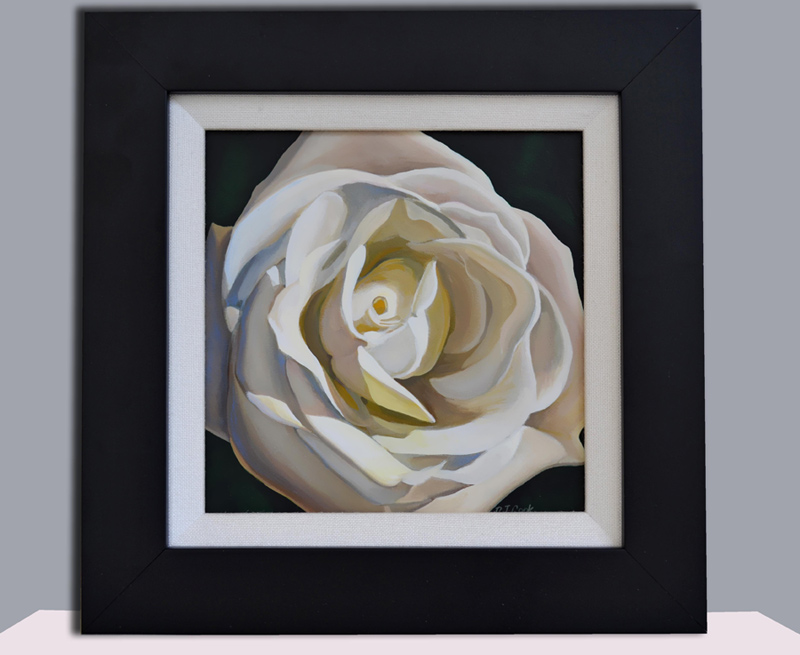 white rose oil painting 6x6 oil on gessoboard.