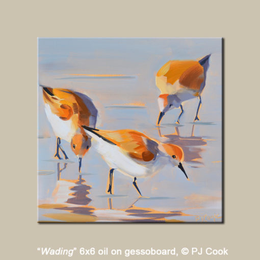a trio of wading birds oil painting 6x6 by PJ Cook.
