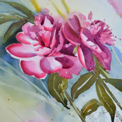 pink floral peonies watercolor floral painting