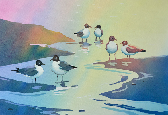laughing gulls sitting together in pairs original watercolor painting
