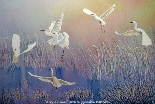white birds landing in a marsh original watercolor by PJ Cook