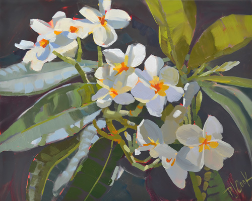 "Plumeria blossoms, 8"" x 10"" oil on raised panel, ©2017 PJ Cook"