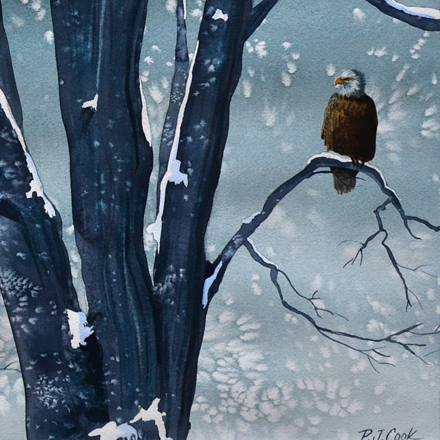 MCloseup of a maple tree with a bald eagle perched during snowstorm original watercolor by PJ Cook.
